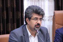 سهم ایران در بازار سلولهای بنیادی و پزشکی بازساختی ناچیز است