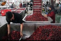 صنایع تبدیلی قزوین دارای یک میلیون تن ظرفیت تولید هستند
