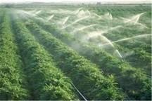 2 هزار هکتار زمین کشاورزی در ماکو به آبیاری نوین مجهز شد