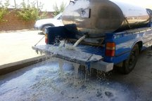 پنج خودرو غیرمجاز جمع آوری شیر در مهاباد توقیف شد