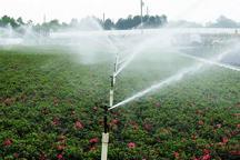 45 درصد از اراضی کشاورزی ورامین به شیوه نوین آبیاری می شود
