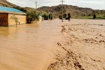 برق 111 روستای لرستان بر اثر سیل و رانش زمین قطع است