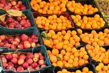 54 غرفه توزیع میوه شب عید در استان مرکزی مستقر می شود