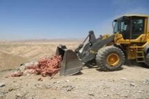250 لاشه مرغ در روستای ضامنجان اراک معدوم شد