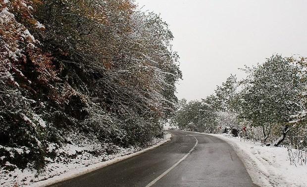 بارش برف جاده کرج - چالوس را لغزنده کرده است