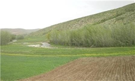 یک هزار و 826 هکتار از اراضی کشاورزی استان مرکزی سنددار شد