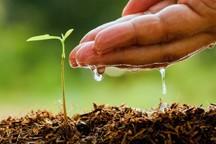 وقتی پویش آب در مزرعه شکل می گیرد