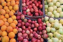 650 تُن سیب و پرتقال برای تنظیم بازار شب عید سمنان ذخیره شد