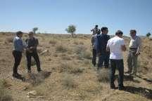 طرح فاضلاب روستای«زول» شهرستان قاینات با بودجه ملی اجرا می شود