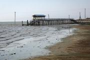 آیا خلیج گرگان خشک می شود؟