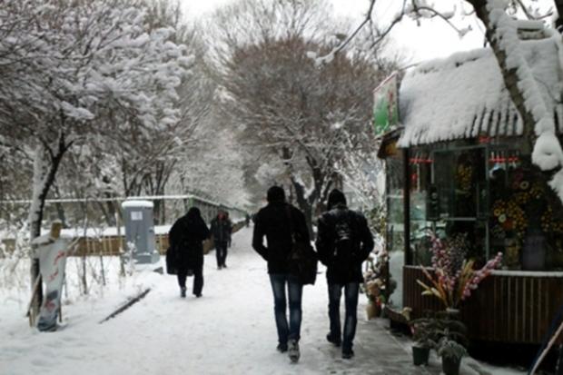 هواشناسی آذربایجان شرقی درباره یخبندان و لغزندگی هشدار داد