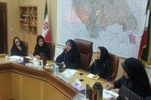 طرح پایش سلامت روانی زنان شاغل در کردستان آغاز شد