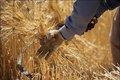 بلاتکلیفی کشاورزان شادگانی بدلیل مشخص نشدن حق آبه کشت پاییزه