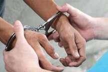 دستگیری اعضای باند سارقان خودرو و منزل با 30 فقره سرقت درالبرز