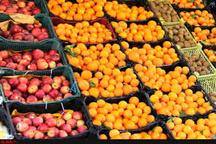 شهروندان نگران تامین میوه شب عید نباشند  توزیع میوه با قیمت مناسبت در ۱۶ جایگاه تعیین شده