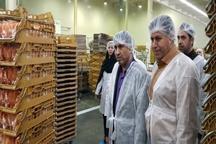 بازدید سرزده استاندار البرز از یک واحد تولید نان صنعتی