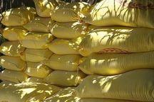 کشف بیش از ۲ تن آرد غیربهداشتی در میناب