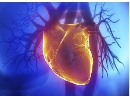 نشانه بیماری قلبی در سنین پیری
