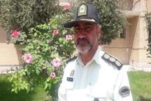 دستگیری سارقان احشام در پلدختر