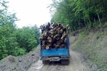 27 تن چوب قاچاق در آستانه اشرفیه کشف شد