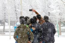 برف چهارمحال و بختیاری را روسفید کرد