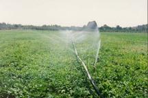 کاشت بذر امید در دل کشاورزان قزوینی توسط دولت
