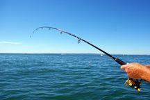 برگزاری جشنواره ماهیگیری در هشترود