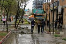 باران هوای کردستان را بهاری کرد