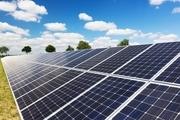 این باکتری جایگزین سلولهای خورشیدی می شود