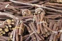 180 کیلوگرم گیاه دارویی قاچاق در جیرفت کشف شد