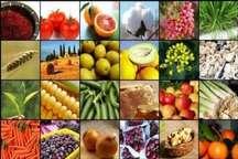 صادرات بیش از 14 میلیون دلار محصولات کشاورزی از آستارا