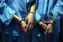 دستگیری ۱۰ سارق زورگیر در البرز