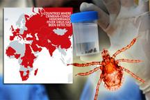 تب کریمه تا 70 درصد موارد موجب مرگ انسان میشود  مردم گوشت را از مراکز مجاز خریداری کنند  پرندگان هم میتوانند ناقل بیماری باشند