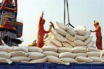 ممنوعیت واردات برنج ادامه مییابد؟