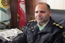 دستگیری ۱۳ سارق سابقهدار در تایباد