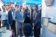 گشایش نمایشگاه توانمندی ها و دستاوردهای مهارتی در گیلان