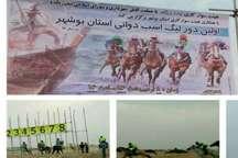 برترینهای نخستین لیگ اسب دوانی در استان بوشهر معرفی شدند