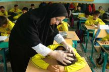 دغدغه شیوع شپش در مدارس مازندران
