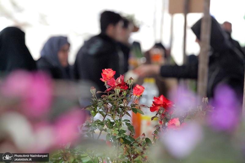 جشنواره گل و گیاه در حریم منطقه 22