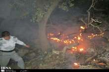 زخم آتش بر جنگل های خوزستان