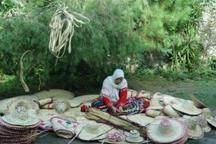 بامبو و حصیر، راهکاری برای اقتصاد سبز در گیلان