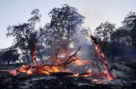 آتش در ارتفاعات شهرستان اندیکا در خوزستان شعله ور شد