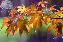 بارندگی ها در ایلام تا فردا ادامه دارد