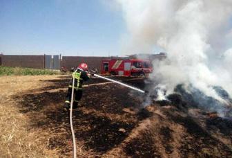 امسال 83 مورد آتش سوزی درزمین های کشاورزی بروجرد رخ داده است