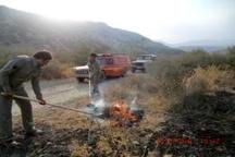 مهار آتش سوزی در نیزارهای پارک جزیره اهواز