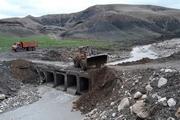 سیلاب به خانه های عشایر بیارجمند خسارت زد
