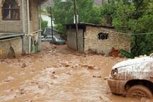 سیلاب چهار واحد مسکونی در شهر زیراب را تخریب کرد
