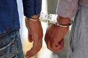 دستگیری سارقان احشام در سبزوار