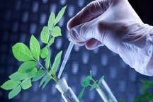ایجاد پارک علم و فناوری کشاورزی در البرز، ایده ای راهبردی