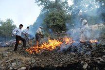 آتش به جان جنگل های درگناو ملکشاهی افتاد